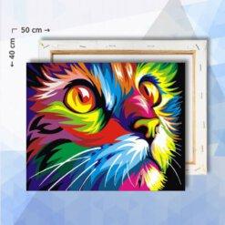Schilderen Op Nummer pakket Gekleurde Kat - 40 x 50 cm - met frame