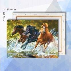 Schilderen Op Nummer pakket Galopperende paarden in Water- 40 x 50 cm - met frame