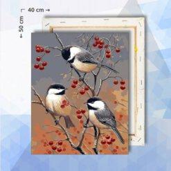 Schilderen Op Nummer pakket Drie Koolmezen - 40 x 50 cm - met frame
