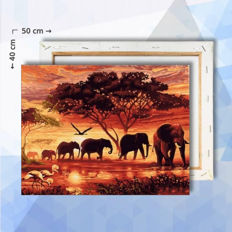 Schilderen op nummer pakket Olifant op weg - 30 x 40 cm - met frame