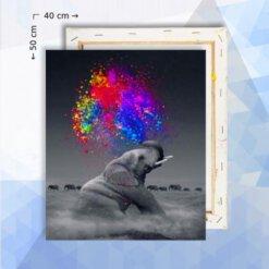 Schilderen op nummer pakket Olifant met verfwolk - 40 x 50 cm - met frame