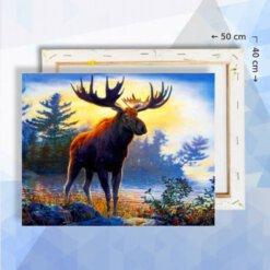 Schilderen op nummer pakket Eland 40 x 50 cm - met frame