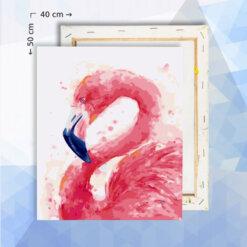 Schilderen op nummer pakket Flamingo - 40 x 50 cm - met frame