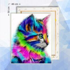 Schilderen op nummer pakket Regenboog Kitten Kat - 40 x 50 cm - met frame