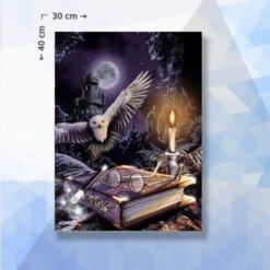 Diamond Painting pakket Harry Potter - 30 x 40 cm- vierkante steentjes
