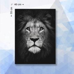 Diamond Painting Pakket Leeuw zwart/wit - 40 x 55 cm