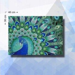 Diamond Painting pakket Pauw - 30x40cm - ronde steentjes