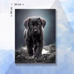 Diamond Painting pakket Puppy Hond Labrador - 40 x 30 cm - vierkante steentjes