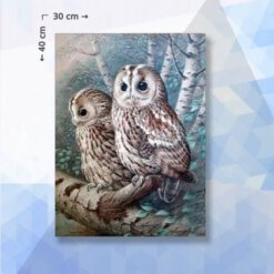 Diamond Painting pakket Uilen in boom - 30 x 40 cm - vierkante steentjes